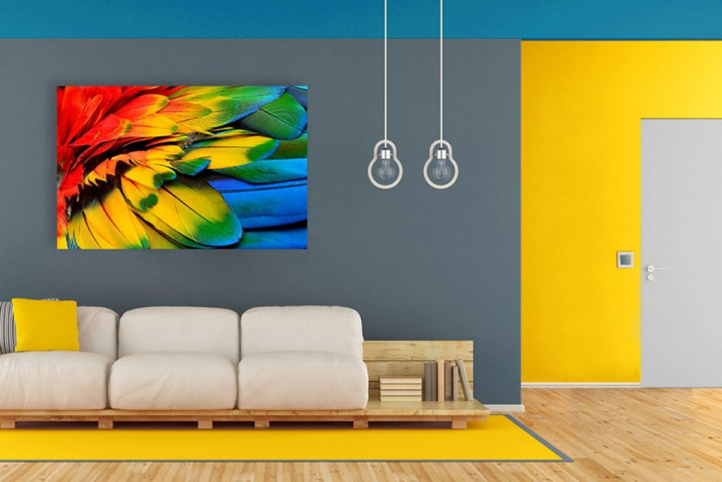 Vernici E Colori Per Pitturare E Imbiancare Casa E Uffici Interni Esterni Colorificio Market Color Arezzo